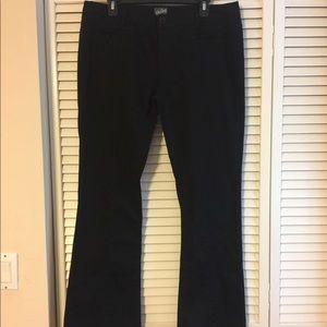 BeBop cotton boot leg pants